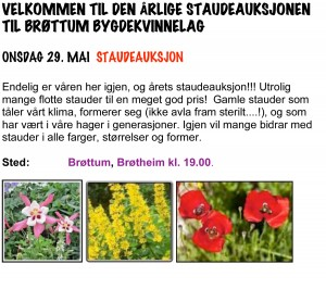 Staudeauksjon2013